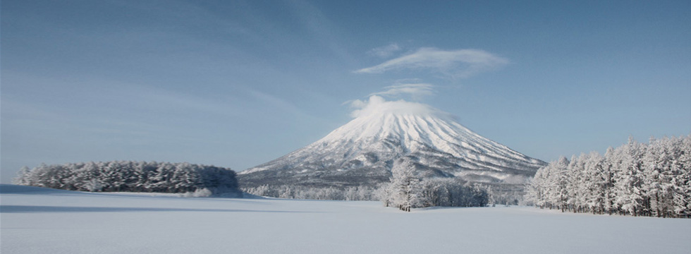 Niseko in Winter